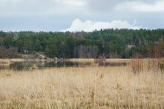 Natureza em Finlandia, paisagem do campo Casa de madeira vermelha na costa do lago foto de stock