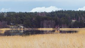 Natureza em Finlandia, paisagem do campo Casa de madeira vermelha na costa do lago imagens de stock royalty free