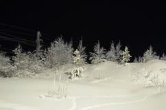Natureza em Hanty-Mansiysk Okrug imagens de stock