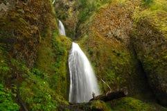 Natureza em seu melhor Foto de Stock