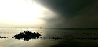 Natureza escura e branca combinado imagem de stock