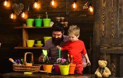 Natureza farpada do amor da crian?a do homem e do rapaz pequeno Pai e filho Dia de pais jardineiro felizes com flores da mola Flo fotografia de stock