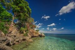 Natureza fresca Imagem de Stock