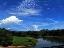 Natureza Goa imagem de stock royalty free