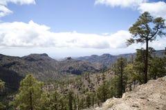 Natureza impressionante nas montanhas de Gran Canaria, Ilhas Canárias sob a bandeira espanhola fotos de stock