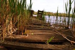 Natureza, lago, água, céu, plantas, silêncio imagens de stock