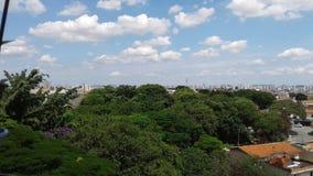 Natureza na cidade fotos de stock