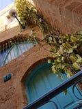 Natureza na cidade velha de Yafo imagem de stock