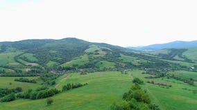 Natureza na inclinação nas montanhas árvores, arbustos, céu vídeos de arquivo