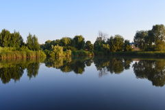 Natureza na região de Poltava fotografia de stock