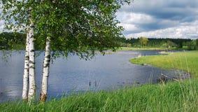Natureza no distrito de Kuldiga. Imagem de Stock Royalty Free