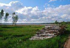 Natureza no distrito de Kuldiga. Fotografia de Stock