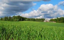 Natureza no distrito de Kuldiga. Imagem de Stock