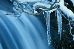 A natureza no inverno Foto de Stock Royalty Free