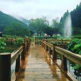 Natureza no Japão Royalty Free Stock Photography