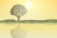Natureza no meio-dia Conceito de projeto exterior Paisagem bonita taxa ilustração do vetor