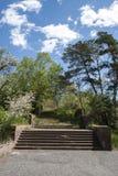 Natureza no obervatório de Byurakan Fotos de Stock Royalty Free