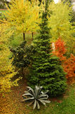 Natureza no outono imagem de stock royalty free