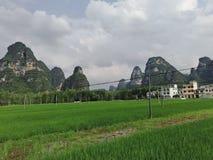 Natureza no Sul da China, imagens de stock royalty free