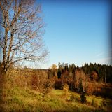 Natureza norueguesa Fotografia de Stock