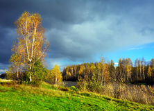 Natureza outonal, cenário Fotografia de Stock Royalty Free