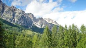 Natureza - paisagem da montanha Imagem de Stock