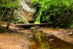 Natureza, paisagem, Ohio do nordeste, OH fotos de stock