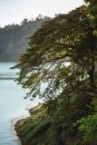 natureza perto da captação da represa Imagens de Stock Royalty Free
