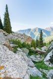 Natureza perto do lago grande Almaty, Tien Shan Mountains em Almaty, Cazaquistão, Ásia imagem de stock royalty free