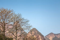 Natureza primitiva da vila de Shenxianju do chinês Foto de Stock Royalty Free