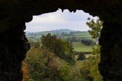Natureza quadro pela ruína Fotografia de Stock