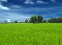 Natureza, árvore, nuvens, céu, ilustração Fotografia de Stock Royalty Free