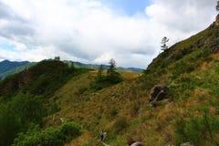 Natureza selvagem em montanhas do altai Fotos de Stock Royalty Free