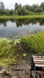 Natureza Siberian no verão foto de stock
