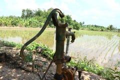 Natureza velha do campo do arroz da água da bomba fotografia de stock