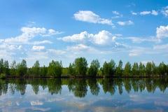 Natureza, verão Fotografia de Stock