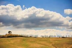 Naturfält i den tuscan regionen San Quirico D Orcia i Italien royaltyfri fotografi