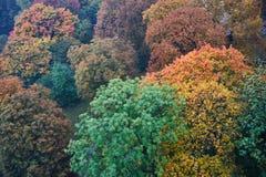 Naturfärger Royaltyfri Fotografi