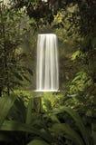 naturfönster fotografering för bildbyråer