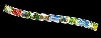 Naturfoto på fotoremsan på en svart bakgrund Arkivbild
