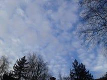 Naturfotografi - moln Royaltyfria Bilder