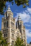 Naturgeschichte-Museum in London Stockfotografie