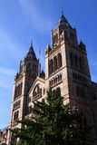 Naturgeschichtemuseum lizenzfreies stockbild