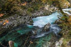 Naturhöstlandskap Vattenfall på Soteska Vintgar Slovenien Arkivfoto
