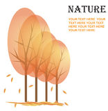 Naturhintergrund Stockfoto