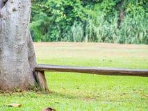 Naturhintergrund der Holzbank und des grünen Grases Stockbilder