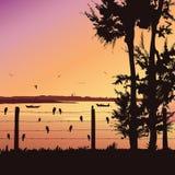 Naturhintergrund mit Fluss und Baum Vögel, die auf Geländer, bunter Sonnenuntergang sitzen Stockbilder
