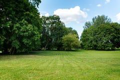 Naturhintergrund, Park mit Wiese Lizenzfreie Stockfotos