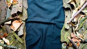 Naturhintergrunddoppeltes versah Blätter und Baumrinde mit Seiten lizenzfreie stockfotos