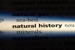 Naturhistoria arkivbilder